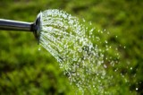 Как правильно поливать огород.
