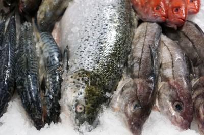 В чем польза морской рыбы ?