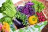 Повышаем урожайность  овощей  без химии.